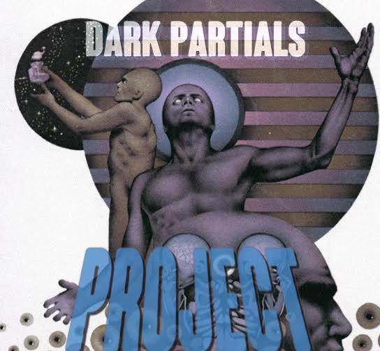 Dark Partials Project