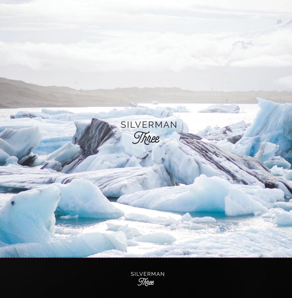 The Silverman Box Set - MP3 - Silverman